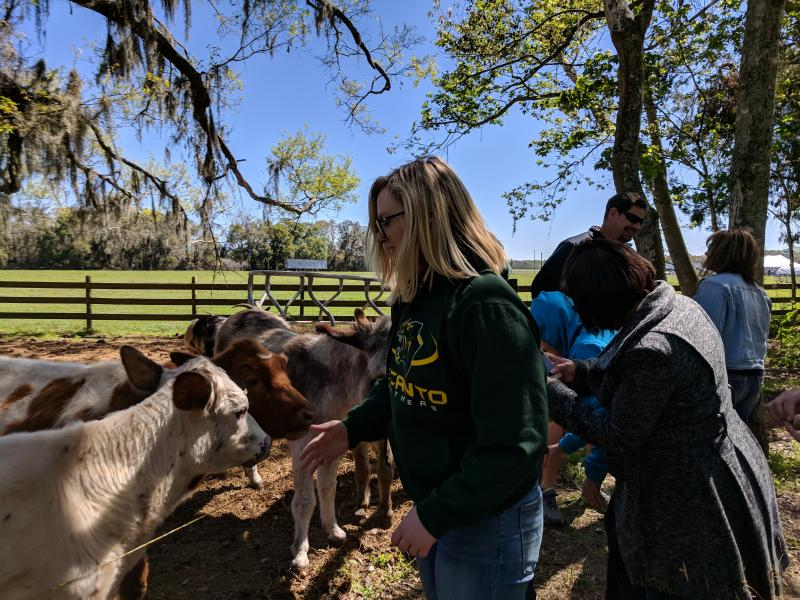 Delaney of Enactus feeds the farm animals
