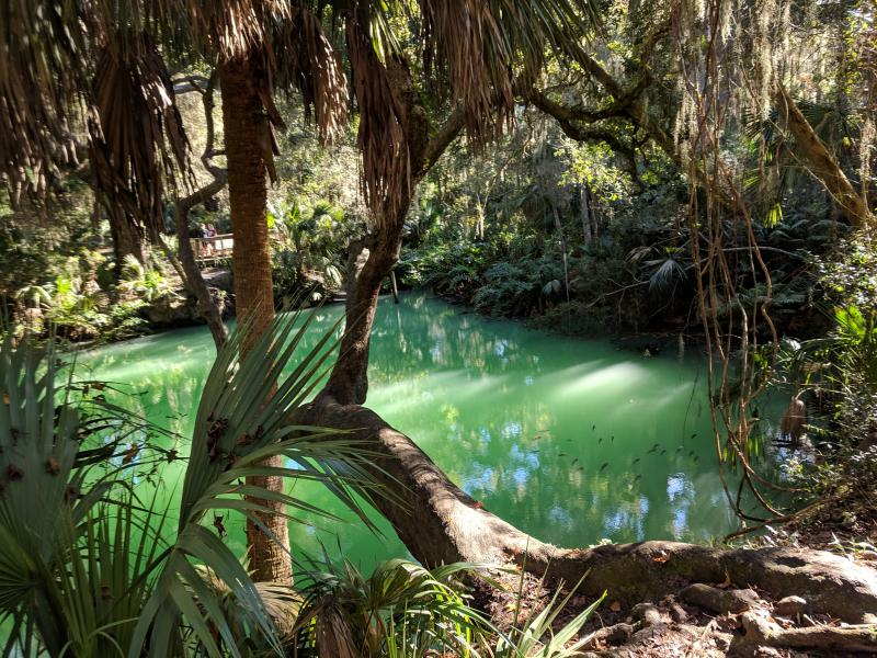 Green Springs Park on St Johns River-to-Sea Loop